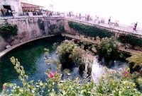 fonte aretusea  - Siracusa (3500 clic)