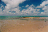 Punta Secca  - Punta secca (6817 clic)