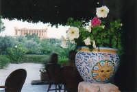 Vista sui Templi  - Agrigento (4164 clic)