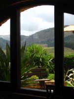 Segesta dalla finestra  - Segesta (1480 clic)