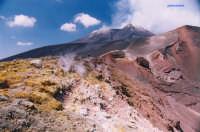 colori di monte   - Etna (1782 clic)