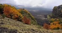 SERRA DEL SALIFIZIO VEDUTA DELLA VALLE DEL BOVE   - Etna (3340 clic)