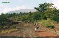 Anello della forestale  - Etna (3097 clic)