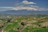 febbraio siciliano campagna nei pressi di Franchetto  - Erei (3723 clic)