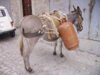 moderno mezzo di trasporto per bombole di gas palazzo adriano se avete quacosa da dire su questa foto mandatemi un messaggio   - Palazzo adriano (10216 clic)
