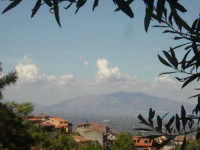 vista dal monte cuccio  PALERMO giulia maggì