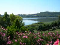 Lago di Pergusa (4335 clic)