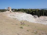 Teatro Greco Teatro Greco   - Siracusa (4151 clic)