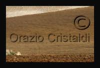 - Agrigento (3697 clic)