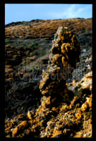 Eruzione 1983 - hornitos  - Etna (2515 clic)