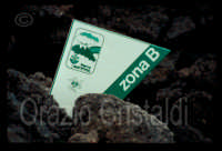 Eruzione 1991/92 val calanna Zafferana Etnea  - Etna (2543 clic)