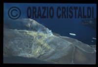 il cratere del vulcano dell'isola di vulcano  - Vulcano (8871 clic)