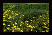 campagne  - Enna (1995 clic)