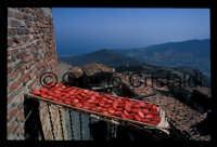Pomodori secchi  - Pollina (6438 clic)