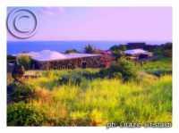 dammusi  - Pantelleria (3241 clic)
