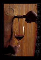 vino  - Catania (3089 clic)