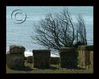sito archeologico di Kamarina   - Santa croce camerina (3980 clic)