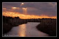 fiume simeto  - Simeto (5845 clic)