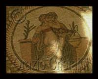 i mosaici  - Piazza armerina (3987 clic)