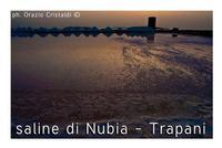 - Nubia (2160 clic)