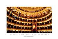 il teatro massimo bellini   - Catania (1071 clic)