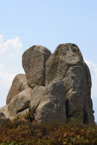 Le Rocche di Argimusco.  - Montalbano elicona (3385 clic)