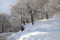 San Fratello - Inverno 2009.  - San fratello (5568 clic)
