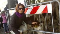 Pasquetta fiera del bestiame   - San gregorio di catania (3809 clic)