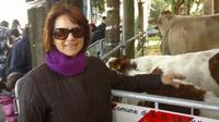 Pasquetta fiera del bestiame   - San gregorio di catania (3492 clic)