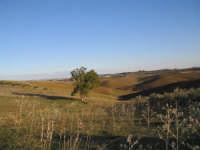 colline in autunno   - Canicattì (4062 clic)