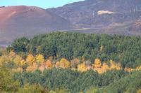 Paesaggi Etnei  Paesaggi etnei   - Pedara (427 clic)