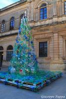 Albero di Natale a Ortigia Albero di Natale ecologico a Ortigia 29-12-2013  - Siracusa (2318 clic)