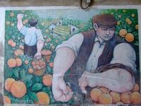 Murales 2 Uno dei murales realizzati sul finire degli anni 80 in via Santa Lucia  - Mascalucia (4531 clic)