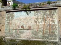 Murales 4 Uno dei murales realizzati sul finire degli anni 80 in via Santa Lucia  - Mascalucia (2474 clic)