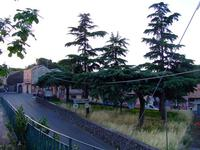 Stradina di San Gregorio   - San gregorio di catania (2523 clic)