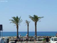Le tre palme   - Marina di ragusa (6869 clic)