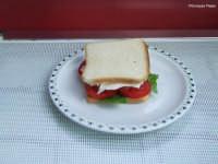 Tramezzino con pomodoro,lattuga e mozzarella   - Mascalucia (3003 clic)