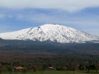 Vista dell'Etna, foto del 16.03.2008  - Bronte (1879 clic)