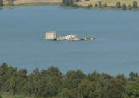 Particolare isola nel Lago Ogliastro  - Aidone (7672 clic)