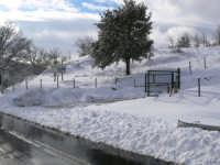 Neve nei pressi dell'agriturismo il noceto, foto del 16.02.2009  - Santa domenica vittoria (7437 clic)