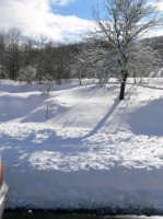 Neve sulla SS116, foto del 16.02.2009  - Floresta (4666 clic)