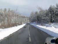 Neve sulla SS116, foto del 16.02.2009  - Floresta (6856 clic)