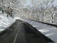 Neve sulla SS116, foto del 16.02.2009  - Floresta (6724 clic)