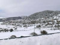 il paese sommerso di neve, foto del 16.02.2009  - Floresta (7472 clic)