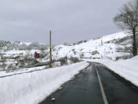 accesso al paese innevato, foto del 16.02.2009  - Floresta (11861 clic)