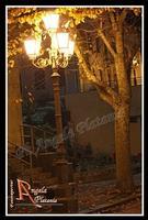 Notte autunnale In autunno cadono le foglie....a Milo... le foglie cadono prima.... Ph Angela Platania  - Milo (3998 clic)