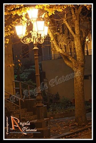 Notte autunnale - MILO - inserita il 21-Nov-11