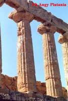 Agrigento - Valle dei Templi e Necropoli  - Agrigento (2328 clic)