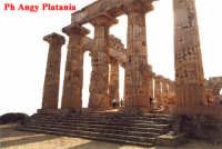 Selinunte - Templi e Necropoli  - Selinunte (2086 clic)