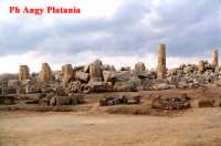 Selinunte - Templi e Necropoli  - Selinunte (2101 clic)